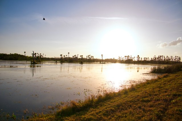 Orlando Wetlands Park Review - Into the Sunset