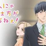 Otona Nya Koi No Shikata Ga Wakaranee! – Versión Completa – Mega – Mediafire