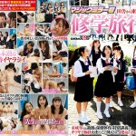 SDMM-093 Jav – Magic Mirror A school trip student who came to Tokyo from the countryside Inserted into a tightly…Mega – Mediafire