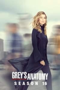 Anatomía según Grey: Temporada 16 – Latino HD 1080p – Online