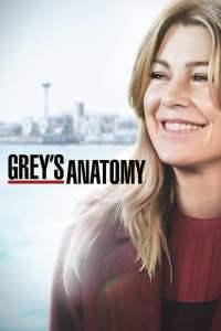 Anatomía según Grey: Temporada 15 – Latino HD 1080p – Online