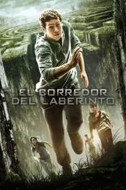Maze Runner: Correr o morir – Latino HD 1080p – Online