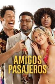 Amigos de las vacaciones – Latino HD 1080p – Online
