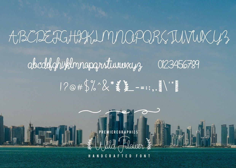 wild-flower-script-font-2