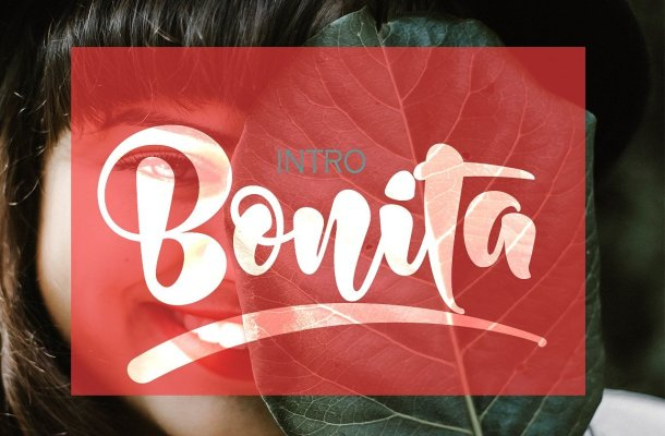 Bonita Bold Script Font Free