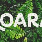 Koara Font Family Free