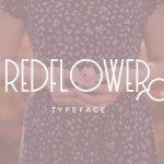 RedFlower Typeface Free