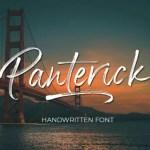Panterick Brush Font Free