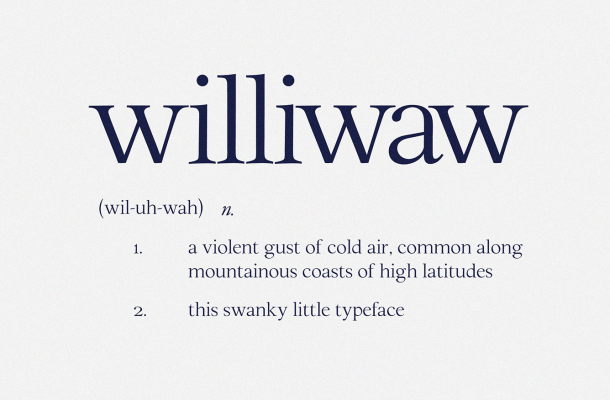 Williwaw Book Typeface Free
