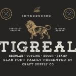 Tigreal Font Family Free