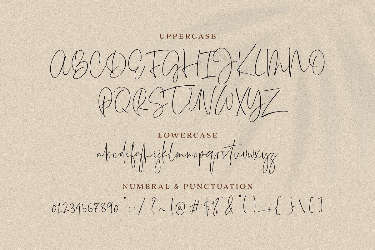 Everleigh Signature Script 04