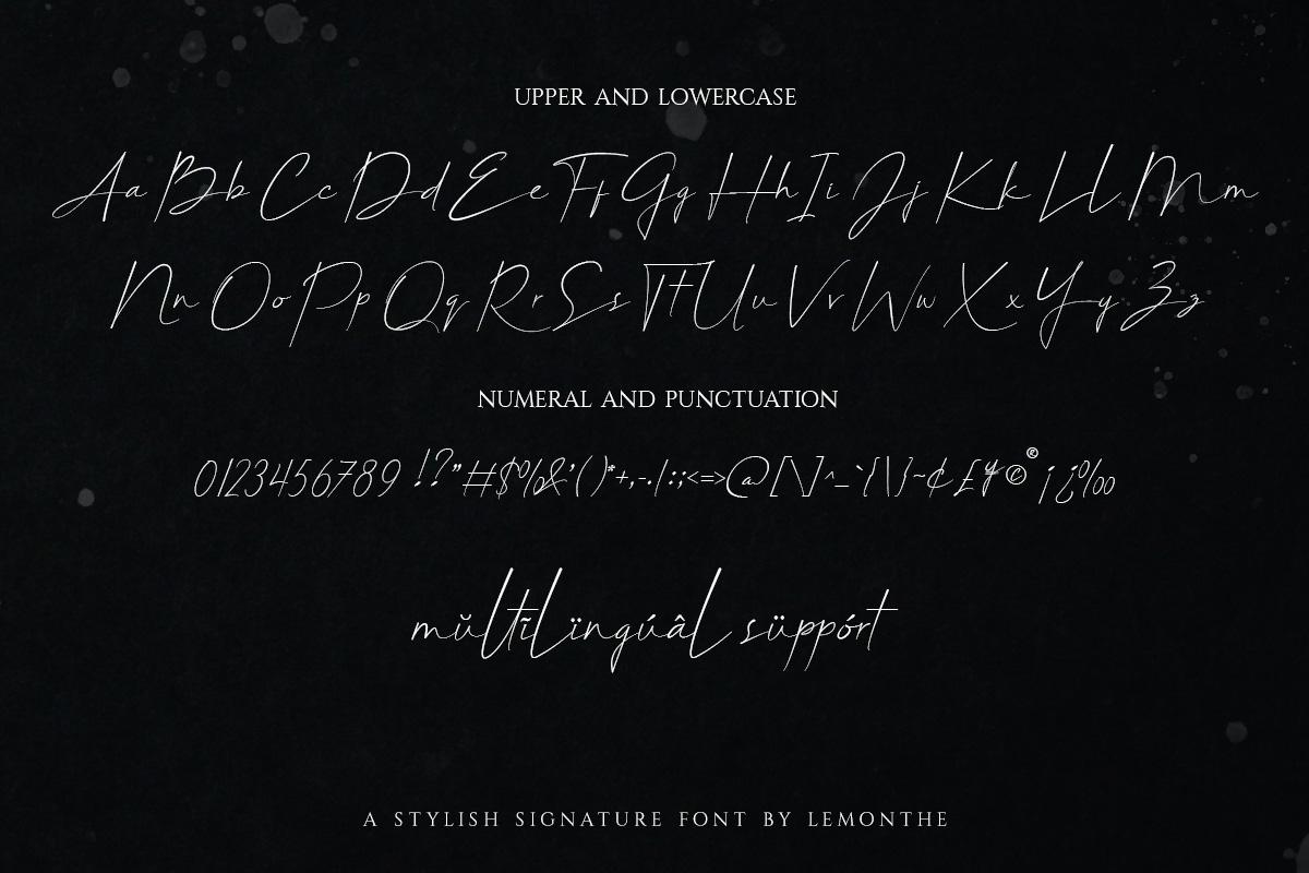 Belligiant Script Font03