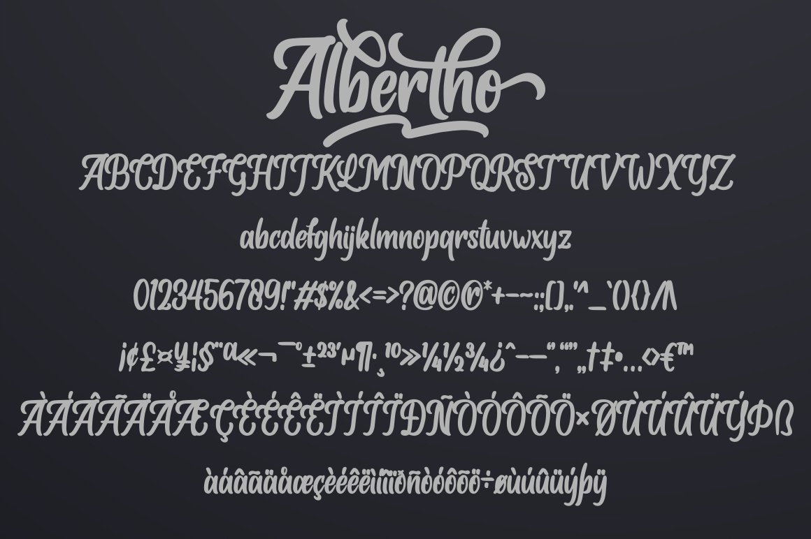 Albertho Bold Script Font-3