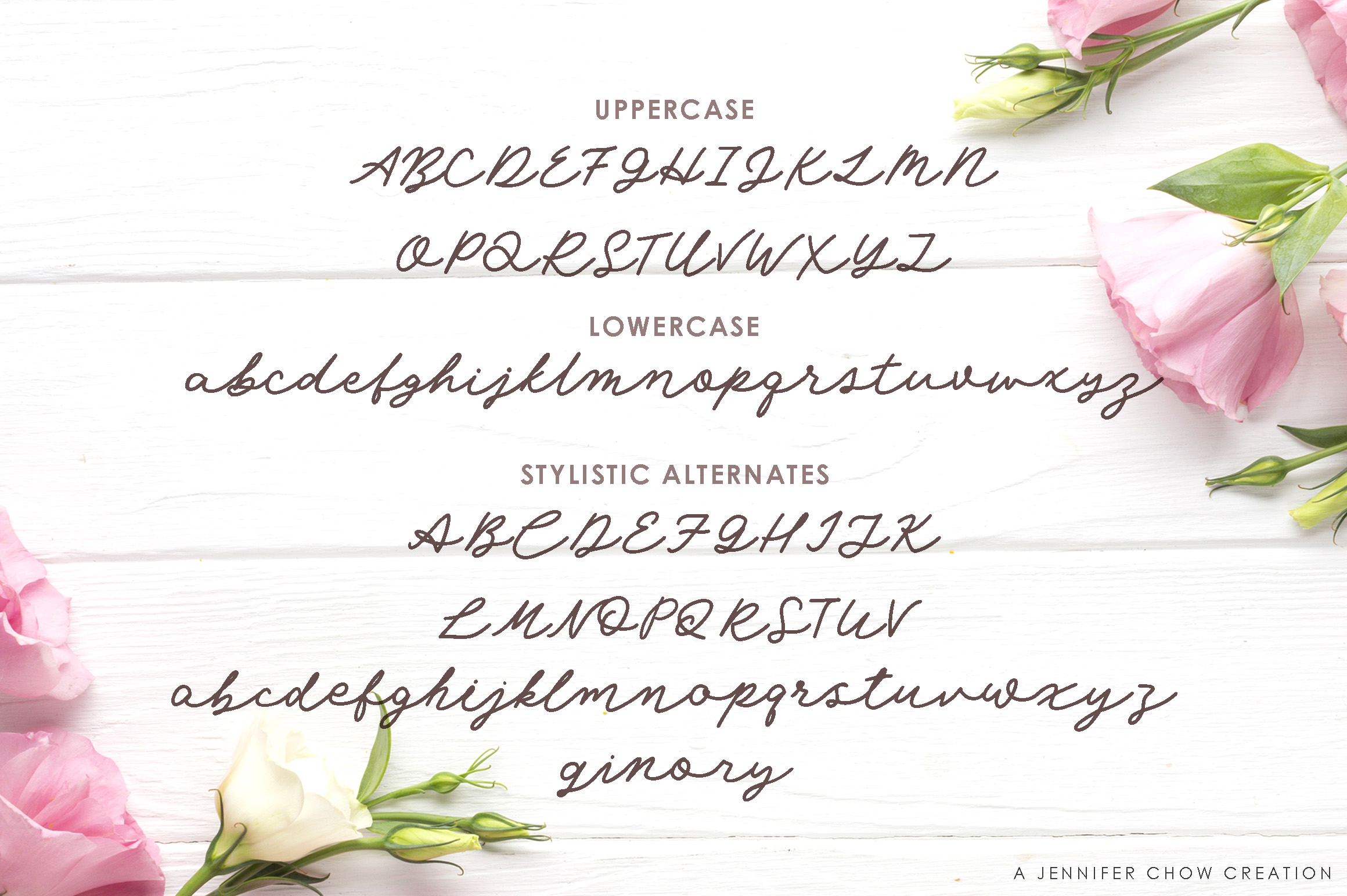 Angel Rose An Elegant Monoline Font-3