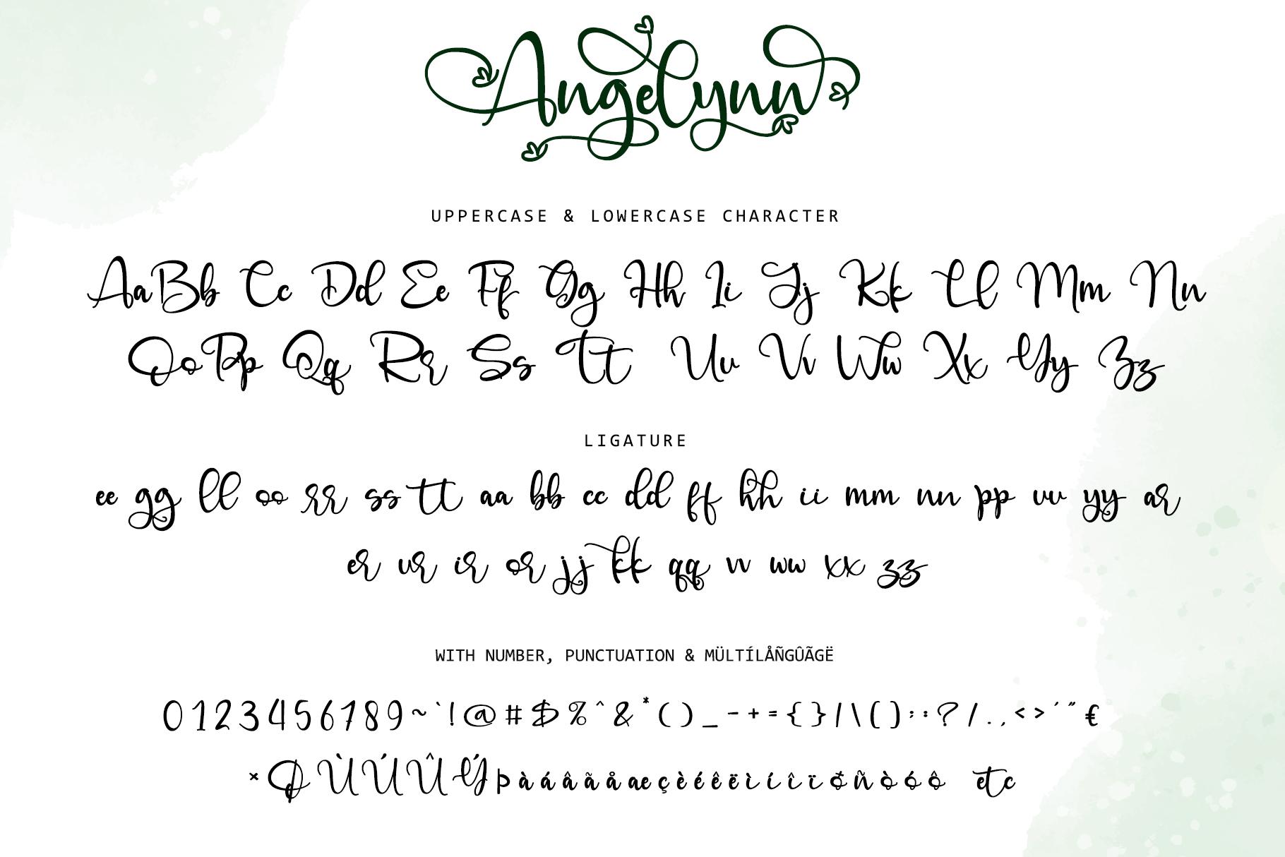 Angelynn Modern Calligraphy Script Font-4