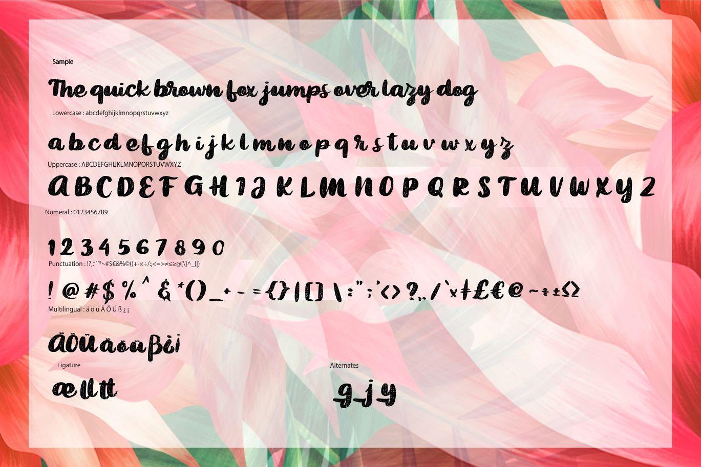Bigted Rough Script Font-3