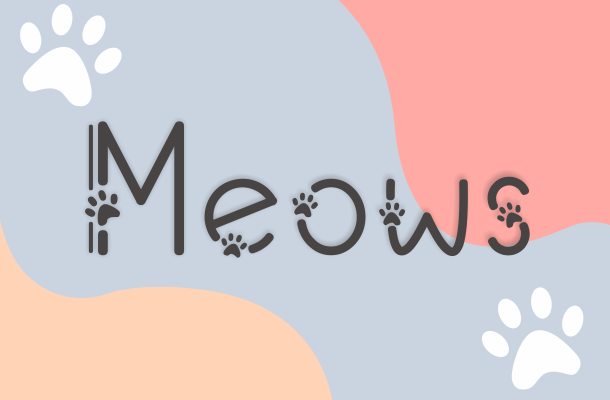 Meows Fancy Font