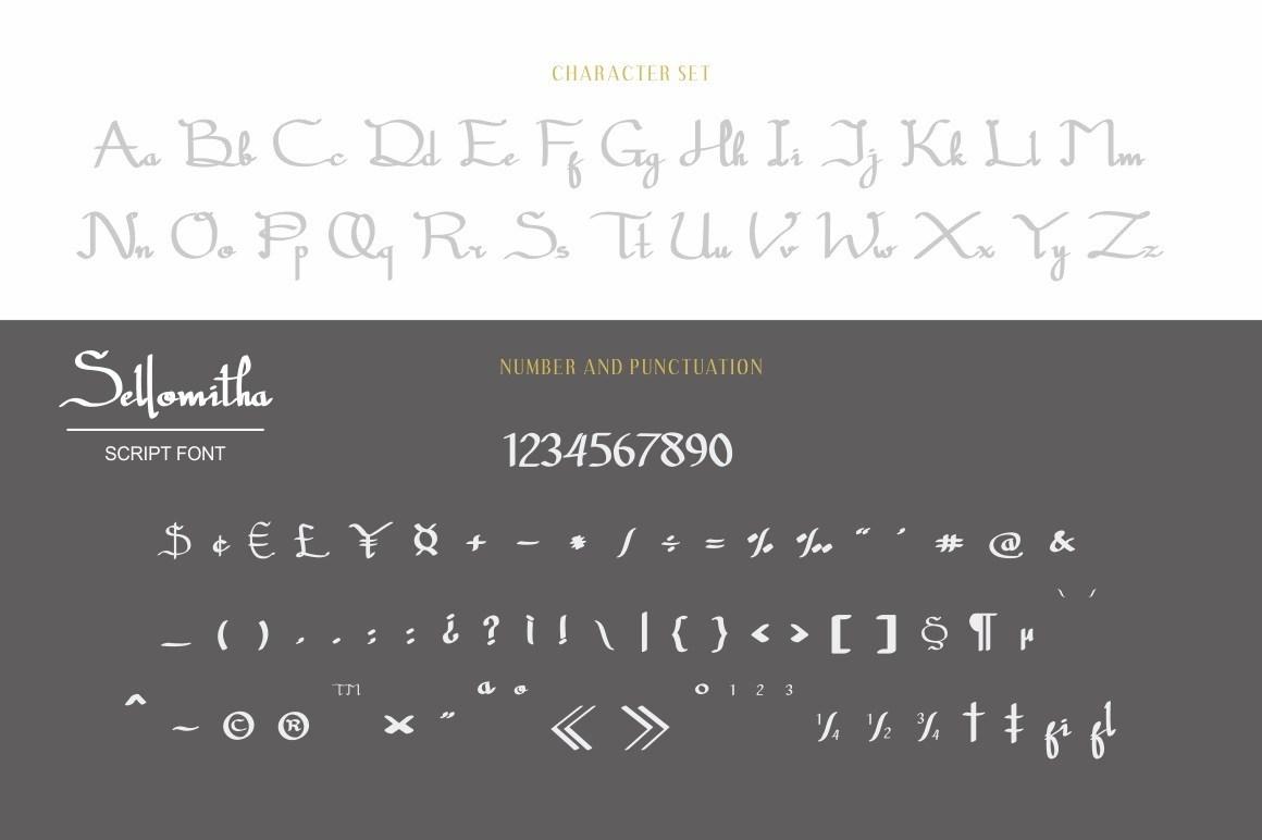 Sellomitha-Handwritten-Script-Font-2