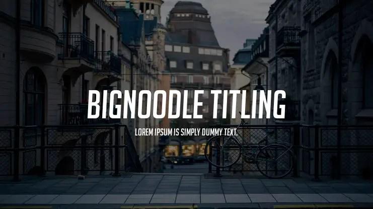 bignoodle-titling-741x415-a730d26998