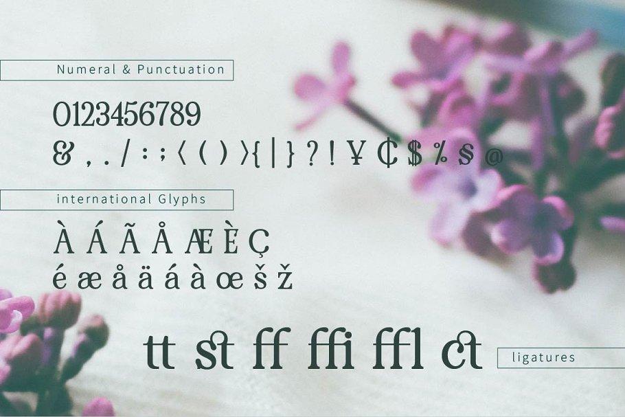 pRenda Bold Modern Serif Font05