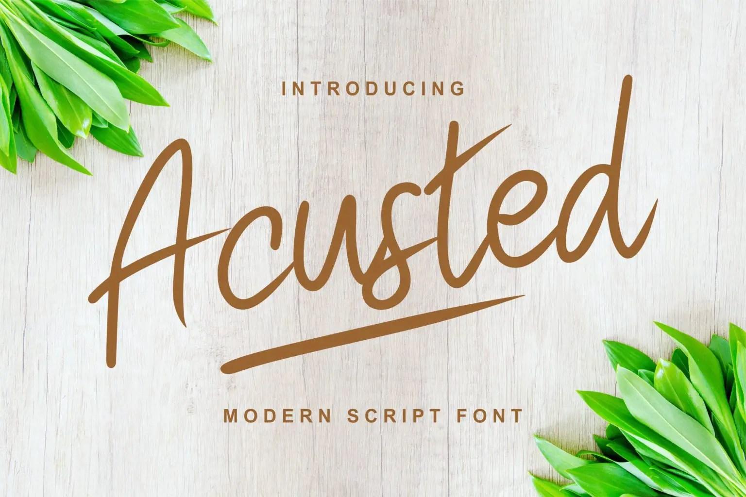 Acusted Modern Script Font-1