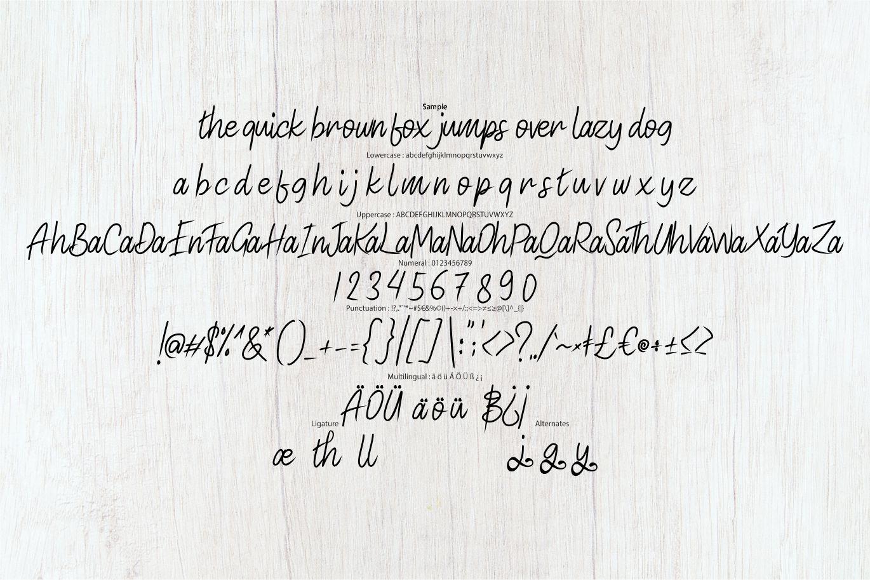 Acusted Modern Script Font-3