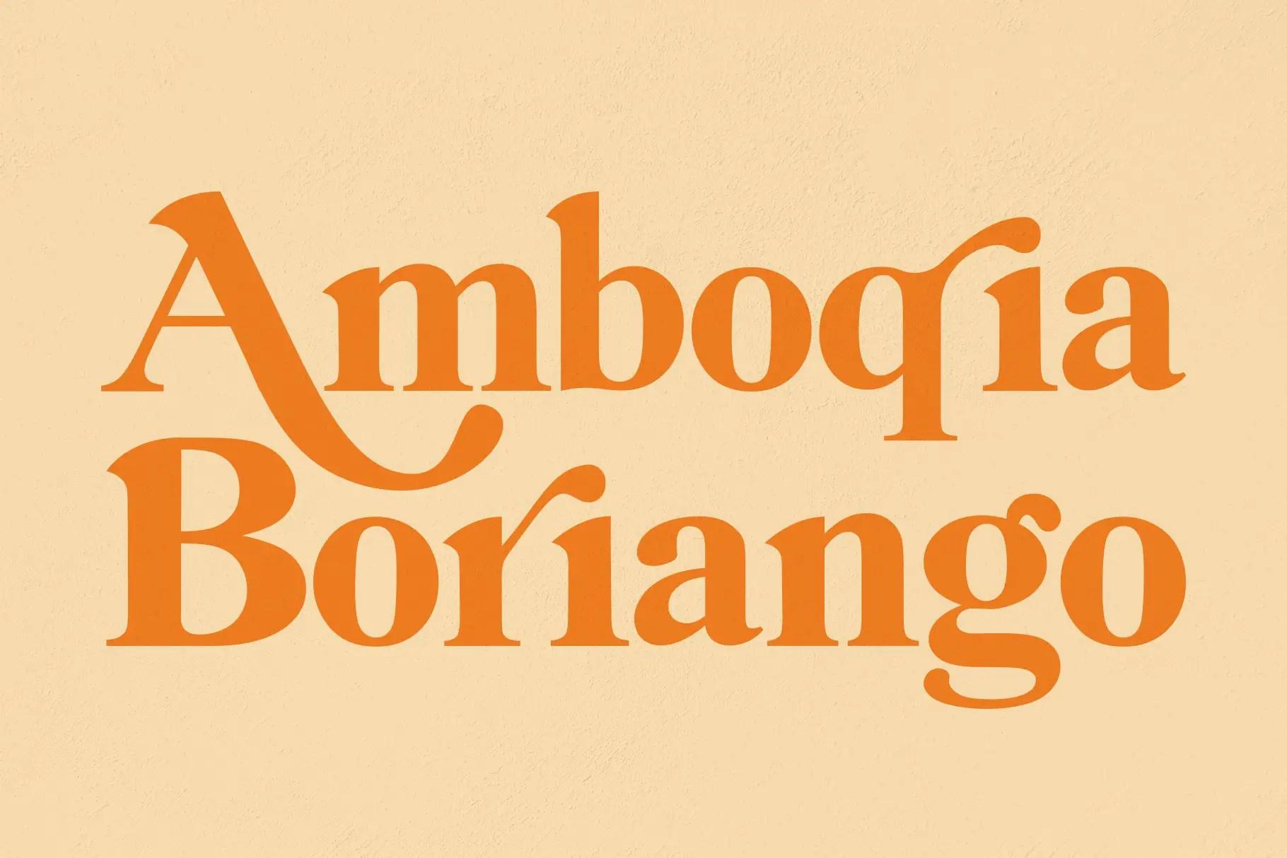 Amboqia Boriango Serif Display Font-1