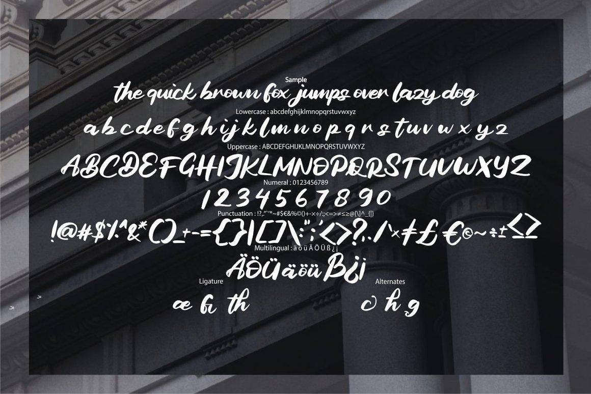 Bagide Soft Script Typeface -3