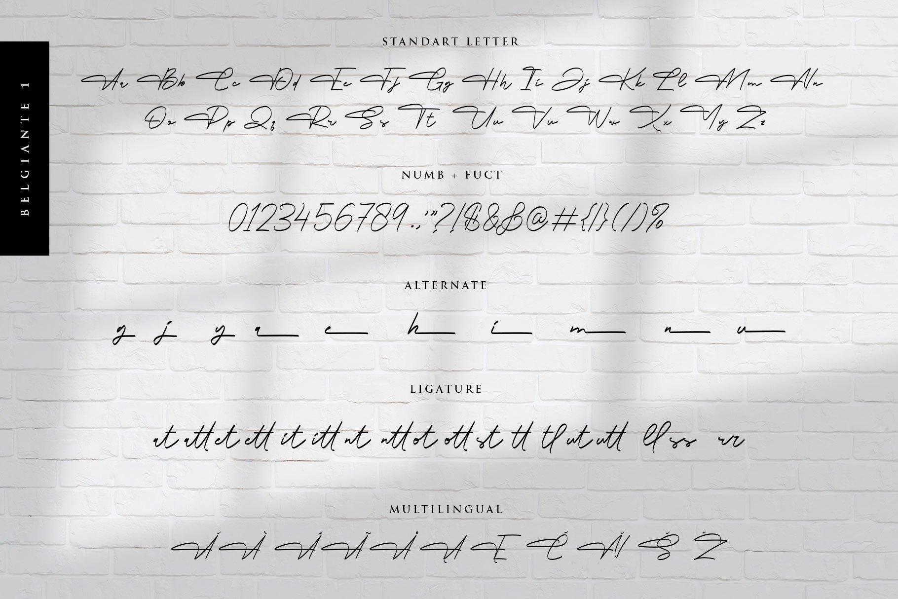 Belgiante-Handwritten-Signature-Font-3