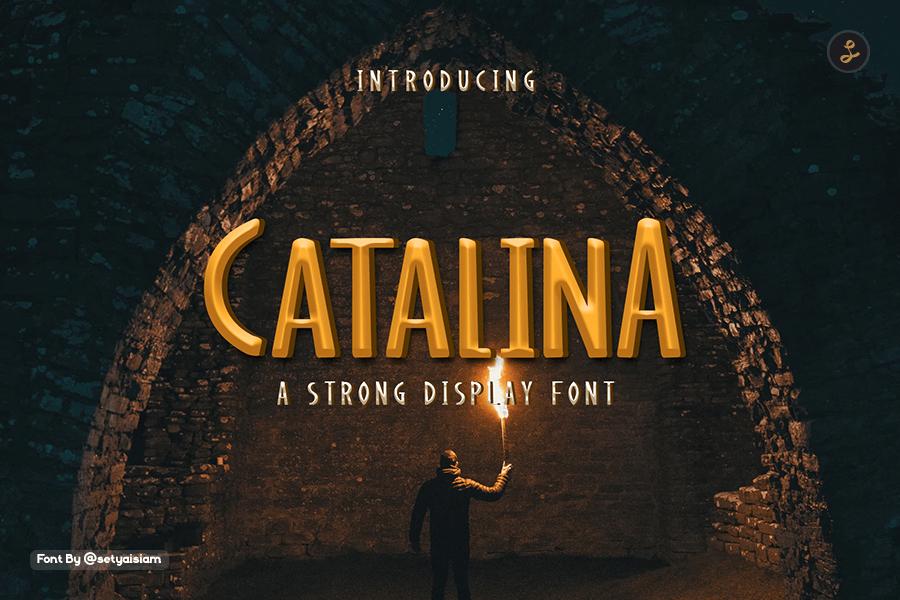 Catalina Display Font-1