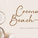 Coconut Beach Handwritten Script Font