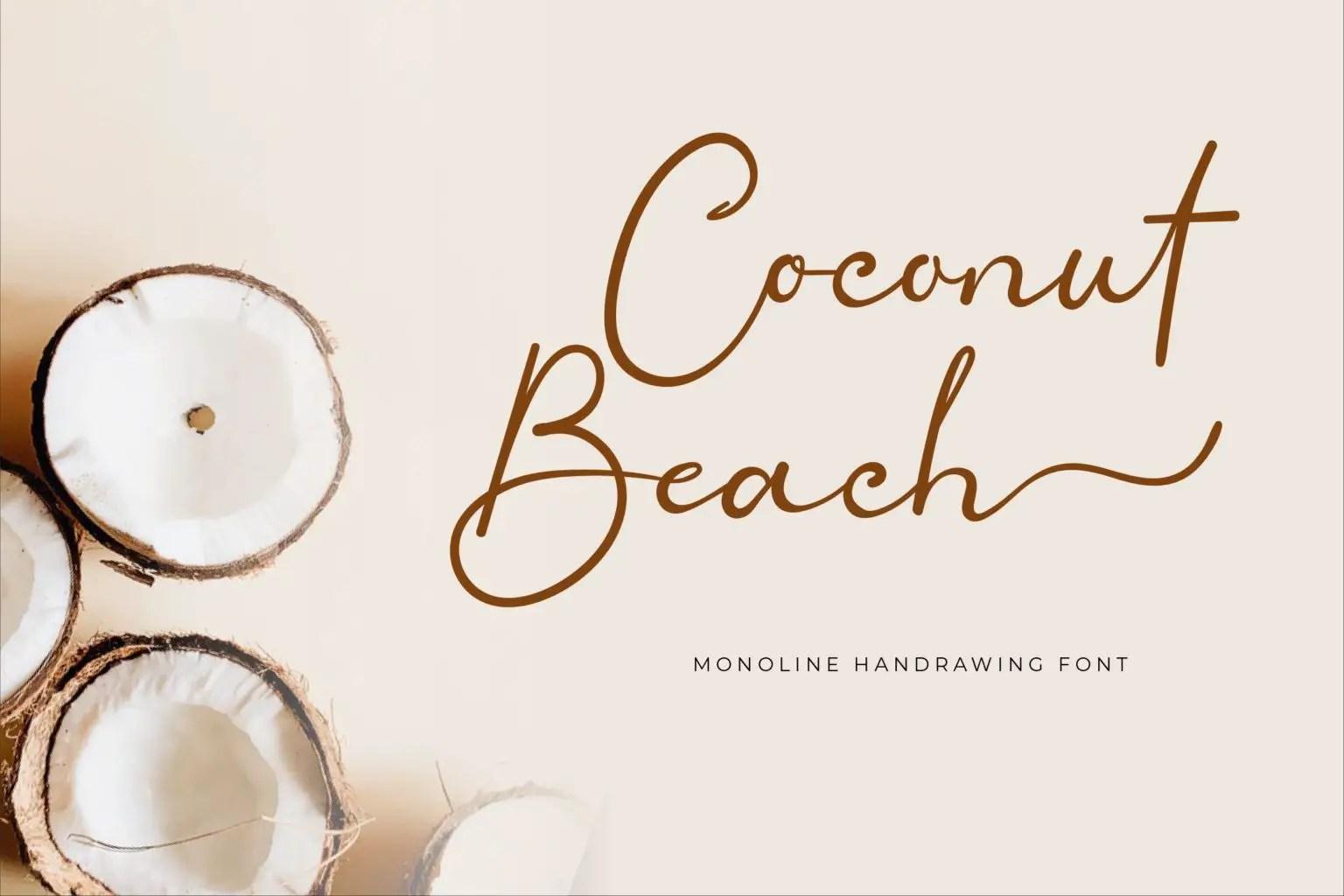 Coconut Beach Handwritten Script Font-1
