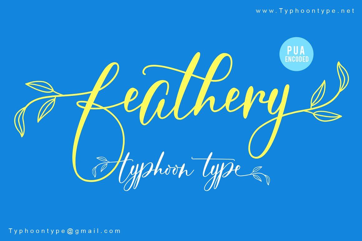Feathery Script Font-1