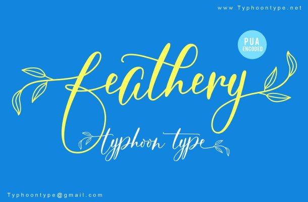 Feathery Script Font