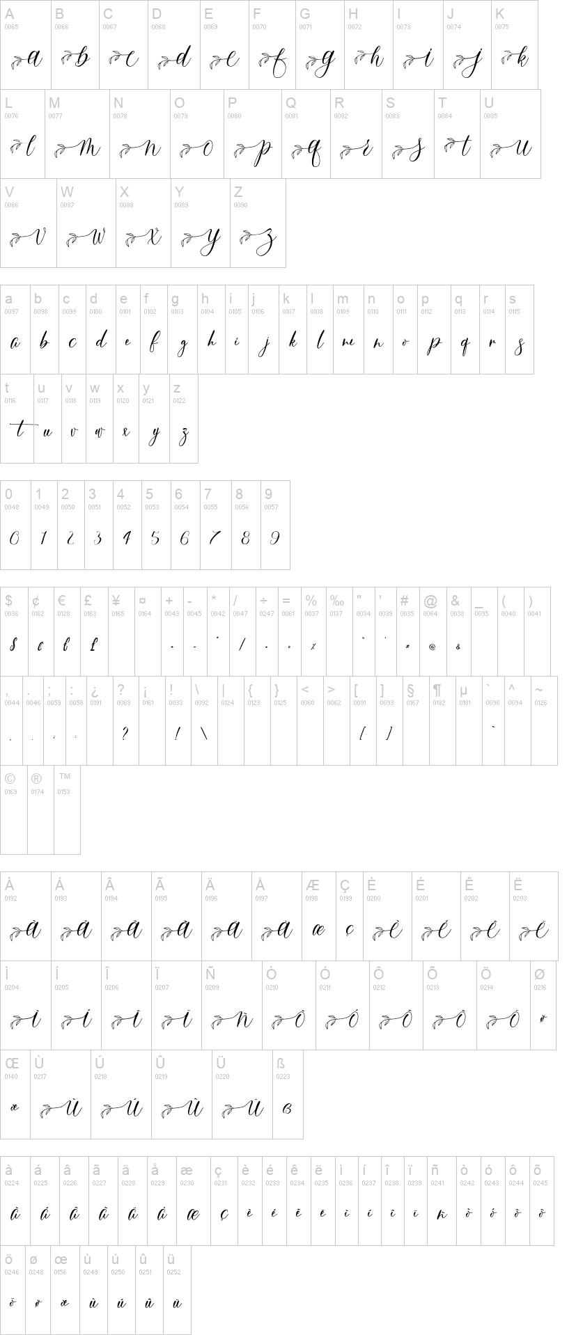 Feathery Script Font-2