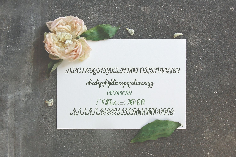 Gardenia Script Calligraphy Font-3 (1)
