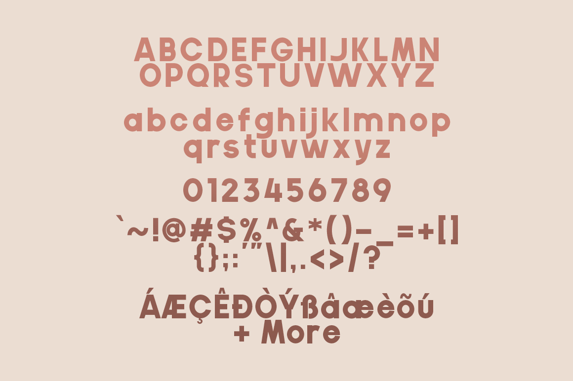 Gila Bold Sans Serif Font Family-3