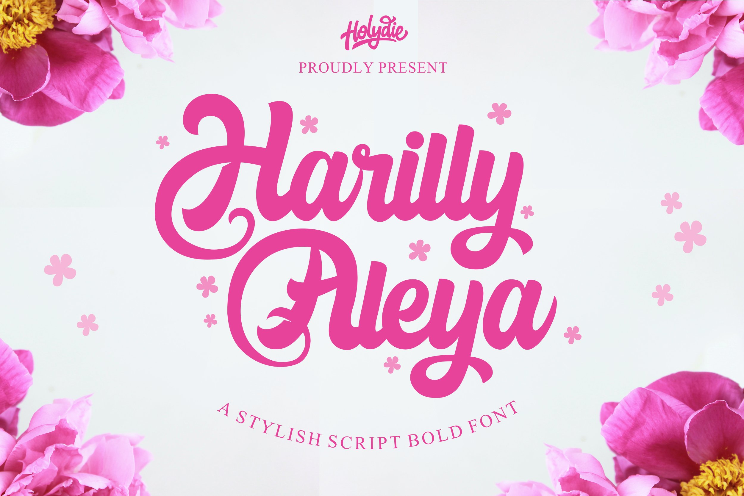 Harilly Aleya Bold Script Font-1