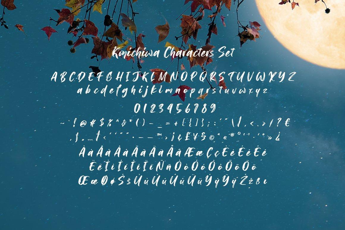 Konichiwa Brush Script Font-3