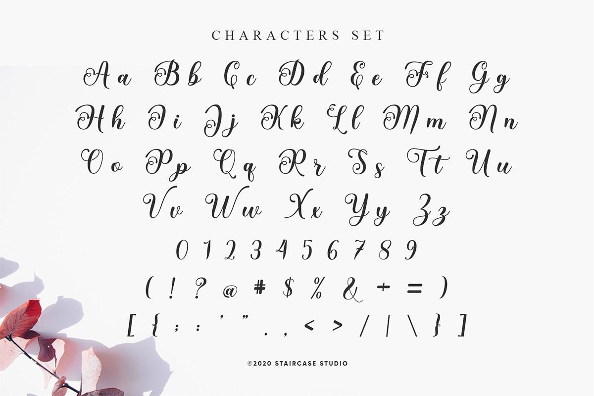 Love Amsterdam Calligraphy Script Font-3