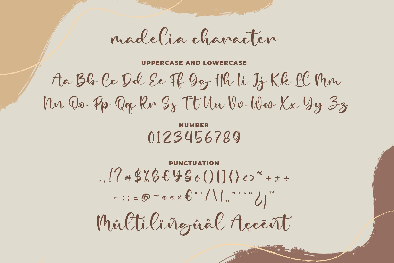 Madelia Modern Script Font-3