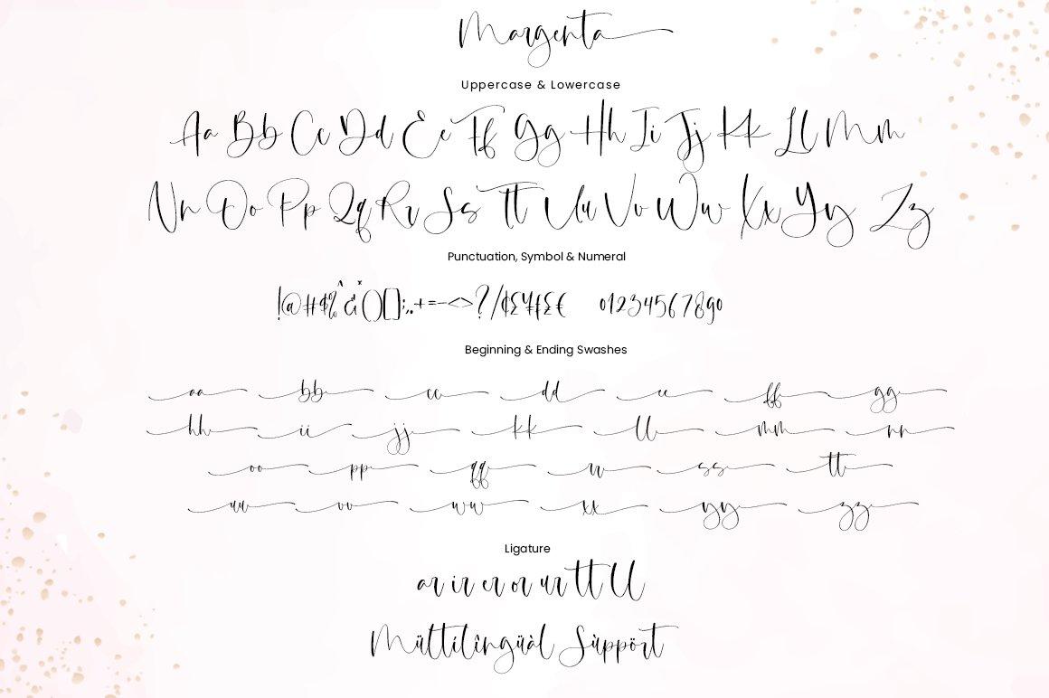 Margenta Calligraphy Script Font-3