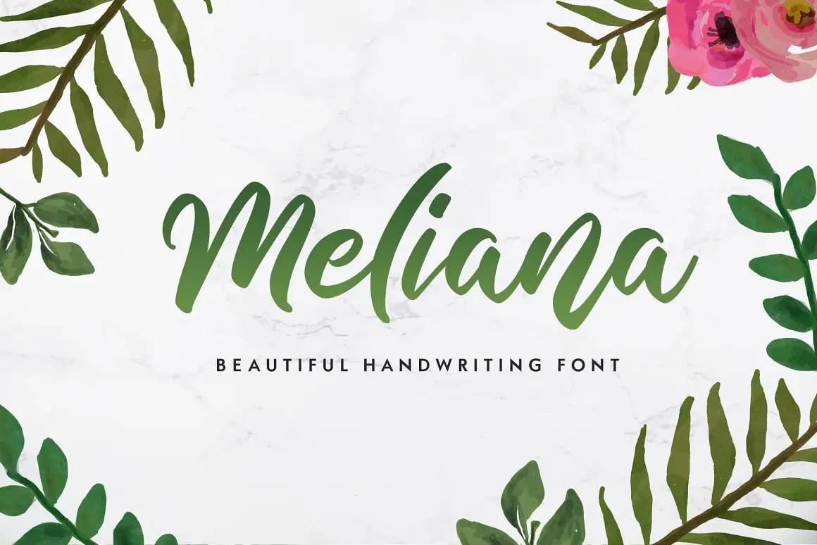 Meliana Script Brush Font-1