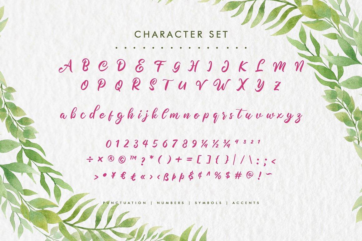 Meliana Script Brush Font-3