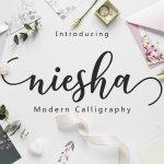 Niesha Modern Calligraphy Script Font
