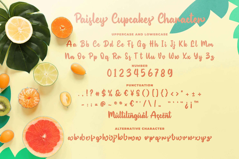 Paisley Cupkace Script Font-3