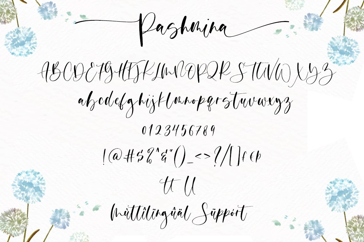 Pashmina Script Calligraphy Font-3
