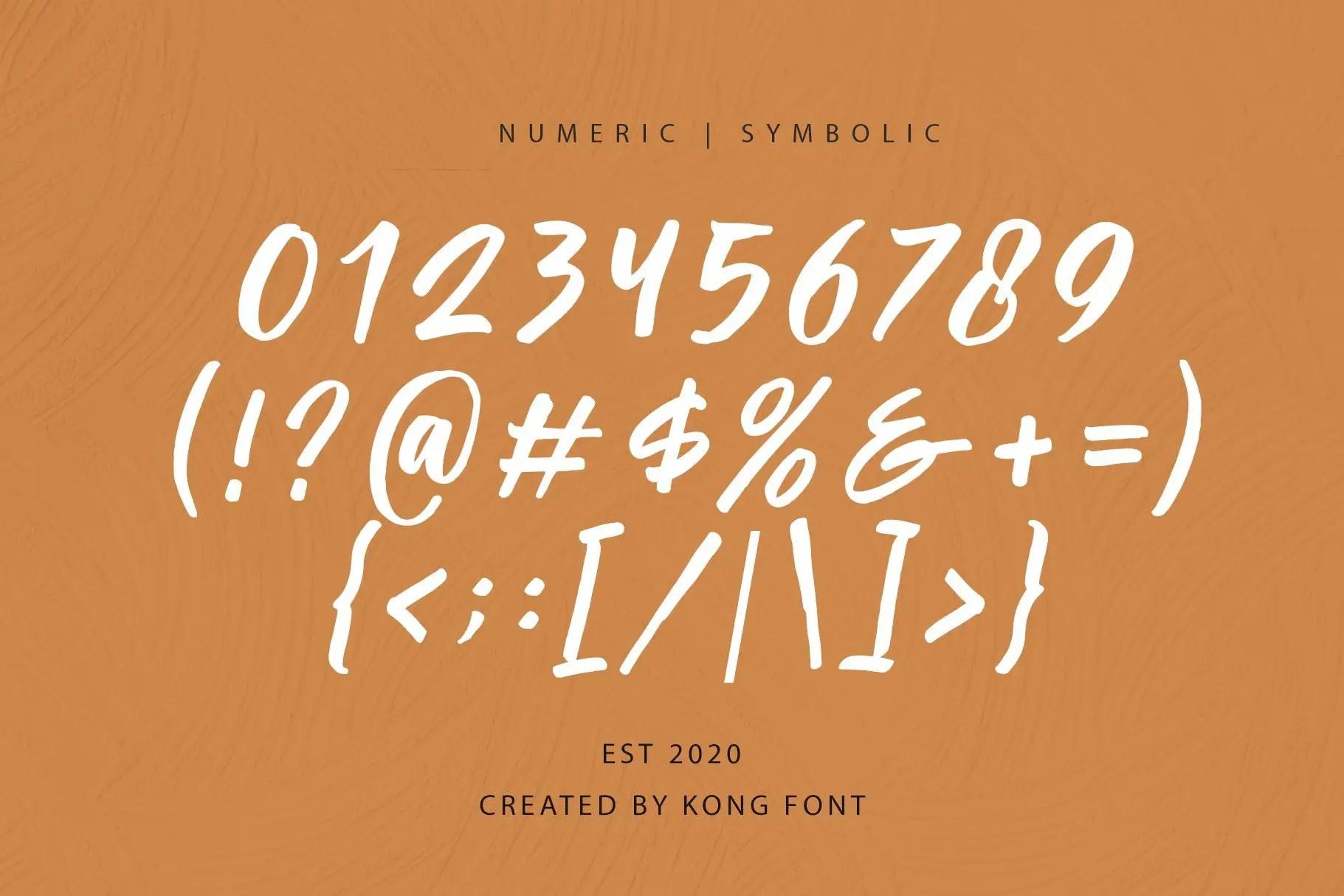 Passifille Handwritten Font-4