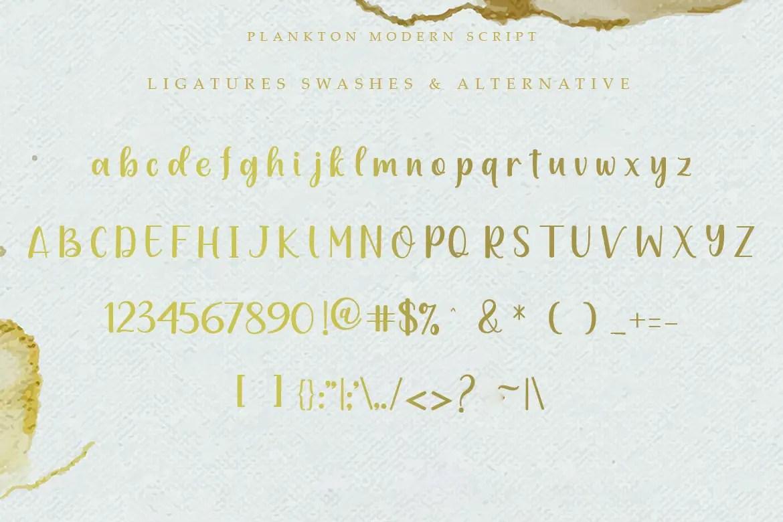 Plankton Calligraphy Script Font-3