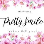 Pretty Smile Modern Calligraphy Script Font